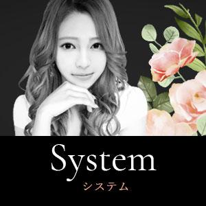 システムのご紹介